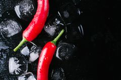Red pepper and ice on a black wood background, fresh hot food on vintage table, freeze cold cube ice, mock up top view stock photography