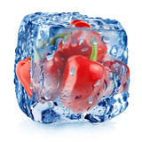 Red pepper in ice cube Royalty Free Stock Photo