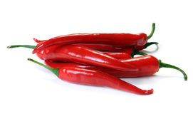 Red pepper isolated Stock Photo
