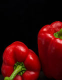 Red Pepper. Isolated on black background Royalty Free Stock Image
