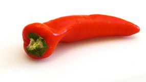 Red pepper. Royalty Free Stock Image