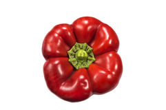 Red pepper isolated over white Stock Image