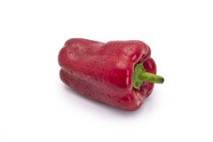 red pepper isolated on white Stock Photo