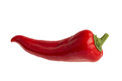 Red pepper in isolated white background Royalty Free Stock Photography