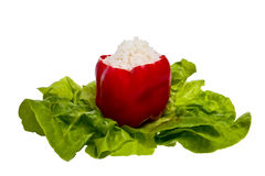 A red pepper on lettuce. A red pepper stuffed with rice on lettuce Royalty Free Stock Photography