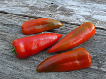 Red pepper on old oak wood Royalty Free Stock Photos
