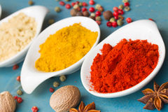Red pepper and other spices Royalty Free Stock Image