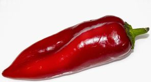 Red pepper on white background stock photos