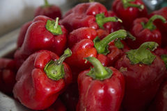 Red pepper paprika. Many red sweet pepper paprika Stock Photography