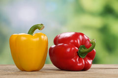 Red pepper or paprika in summer with copyspace Stock Photo
