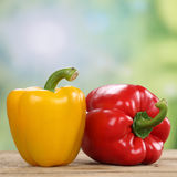 Red pepper or paprika vegetables in summer Stock Photo