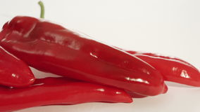 Red pepper stock video
