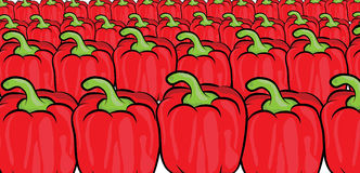 Red pepper pattern Stock Image
