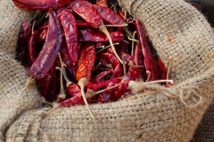 Red pepper in sack. In Thailand Royalty Free Stock Image