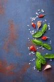 Red pepper, salt, garlic and basil. Top view stock photos