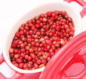Red pepper seeds. Some dried pepper seeds in a bowl Royalty Free Stock Photos