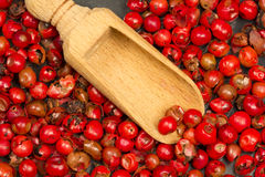 Red pepper spice texture with wooden spoon Stock Photos