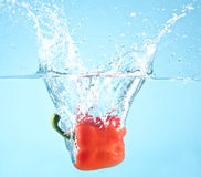 Red pepper splashed into water Stock Photo