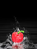 Red pepper splashing in water. Red bell pepper splashing in water with black background and copy space Stock Image