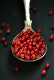 Red pepper in a spoon. Pepper in a ancient spoon on black royalty free stock images