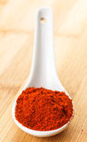 Red pepper on spoon Stock Photography