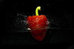 Red Pepper Studio Splash Tank Stock Photos