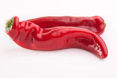 Red pepper. Two red peppers on white stock photos