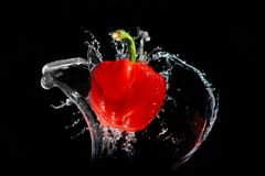 Red pepper in water Royalty Free Stock Photography