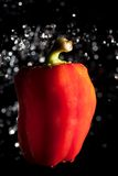 Red pepper and water drops on black Royalty Free Stock Photography