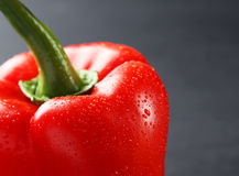 Red pepper with water drops on a grey background Stock Photography