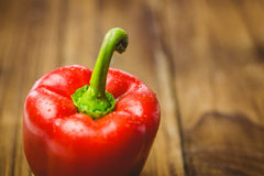 Red pepper with water drops Stock Image