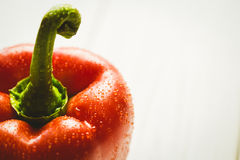 Red pepper with water drops Royalty Free Stock Images