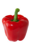 Red pepper on white background Stock Photography