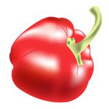 Red pepper on white background Royalty Free Stock Photography