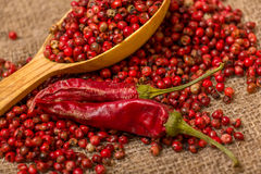 Red peppercorn Royalty Free Stock Images
