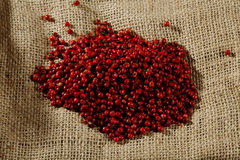 Red peppercorns Royalty Free Stock Image