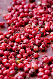 Red peppercorns. Close-up of red peppercorns on a wooden background Stock Photography