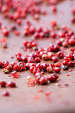 Red peppercorns Stock Image