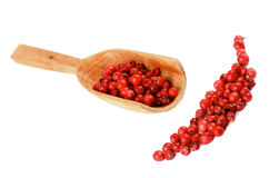 Red Peppercorns Royalty Free Stock Photography