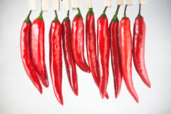 Red peppers. Hanging on a clothespin Royalty Free Stock Image