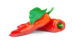Red peppers. On white background Royalty Free Stock Photography