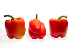 Red peppers Stock Images