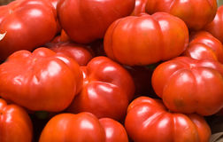 Red peppers. In a local shop Stock Photography