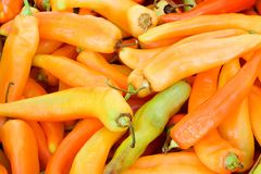 Red peppers. Red hot peppers at the market royalty free stock photos