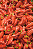 Red Peppers Background Royalty Free Stock Images