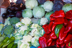 Red peppers, cauliflowers, cucumbers, cabages, broccolies, zuchinis and egg plants Stock Photos