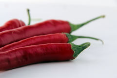 Red peppers. Red chili peppers Concept and Decoration stock photo