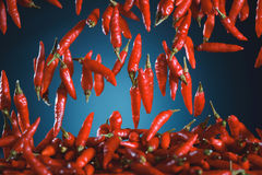 Red Peppers Falling Royalty Free Stock Images