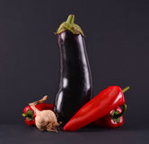 Red peppers, garlic and eggplants Stock Photography
