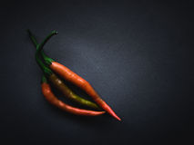 Red Peppers on Grey Royalty Free Stock Photo